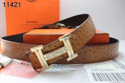 Special Belt Brown Mens with Golden H Buckle Hermes Wholesale